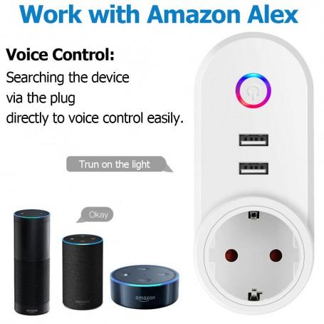 DDP 2 USB Port Smart WiFi EU Plug App Remote Control Socket Timer Outlet  For Alexa Google Home